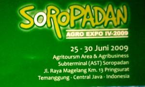 soropadan expo