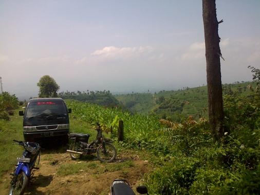 Bulu-20140811-01547